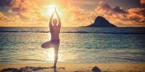 yoga tree on beach